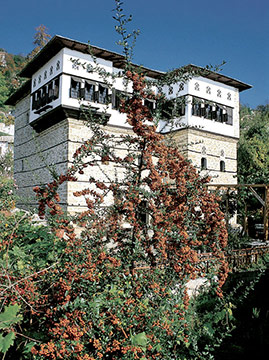 Vizitsa. The restored mansion, now a guesthouse, emerges imposing behind the wild flowers.